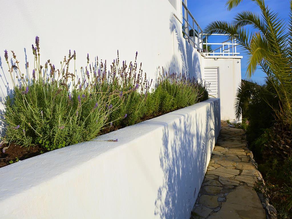casa de verano con piscina en sitges y su jardín de lavandas
