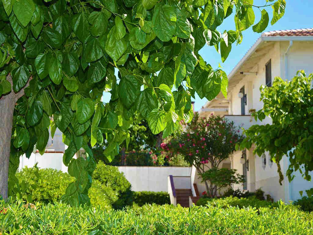 Appartement à louer à Sitges: accès au jardin