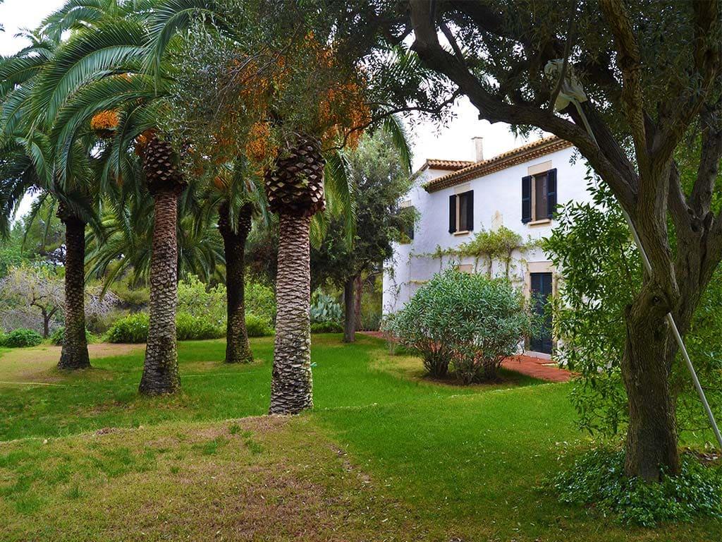 casa rural en sitges y sus palmeras mediterráneas
