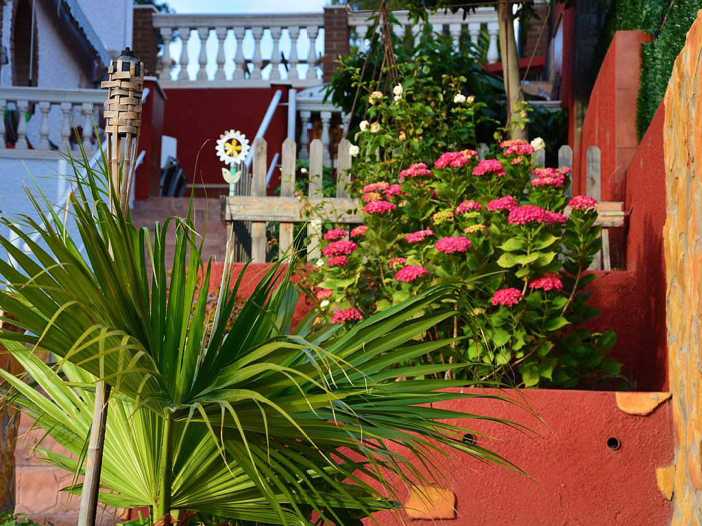 mediterranean house in Sitges and its plants