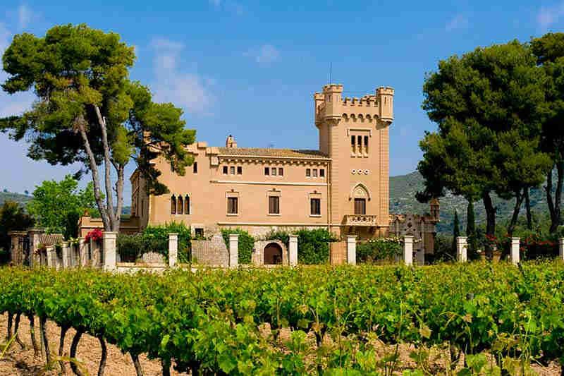 Actividades en el Penedès: bodegas de vino